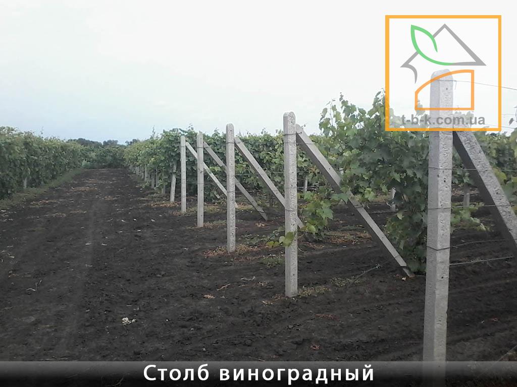 Столб бетонный ЧЗ 110*110*2800 для винограда и других с/х нужд и ограждений - Фото 2