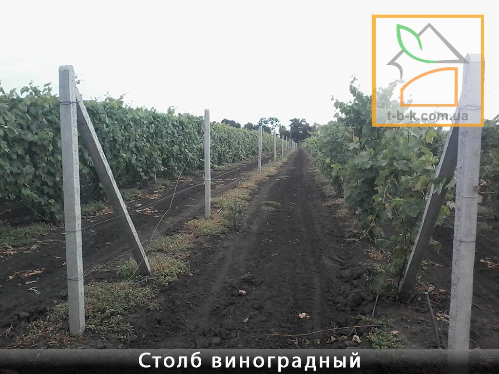 Столб бетонный ЧЗ 110*110*2800 для винограда и других с/х нужд и ограждений - Фото 3