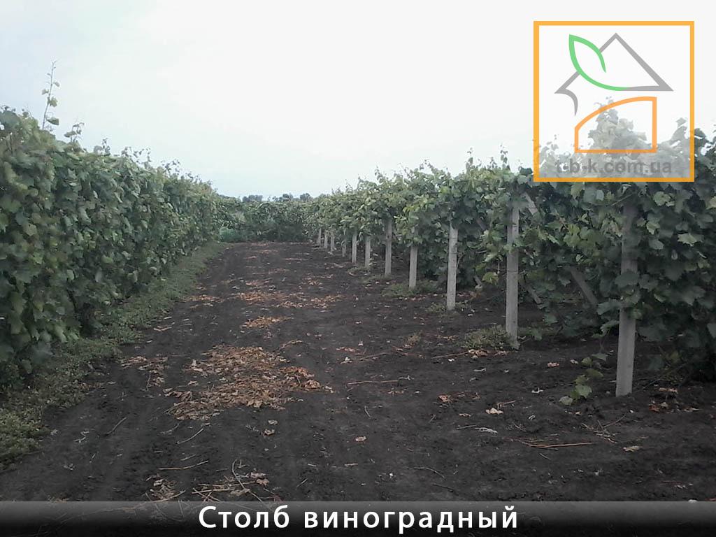Столб бетонный ЧЗ 110*110*2800 для винограда и других с/х нужд и ограждений - Фото 4