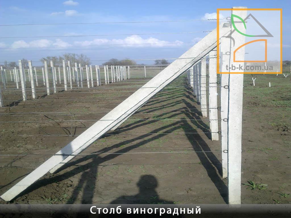 Столб бетонный ЧЗ 110*110*2800 для винограда и других с/х нужд и ограждений - Фото 5