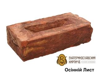 Картинка Кирпич лицевой Осенний Лист производство Екатеринославский Кирпич